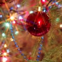 Поздравляем с праздником Нового 2010 года.